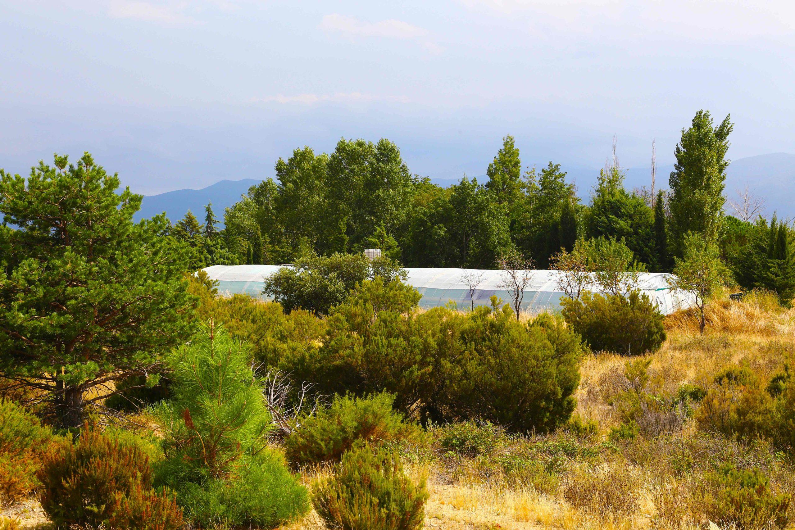ferme de spiruline Pyrénées Orientales
